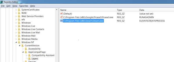 Screenshot of the steam.exe registry entry that enables compati